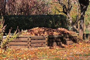 Compost Heap Leaves Fall
