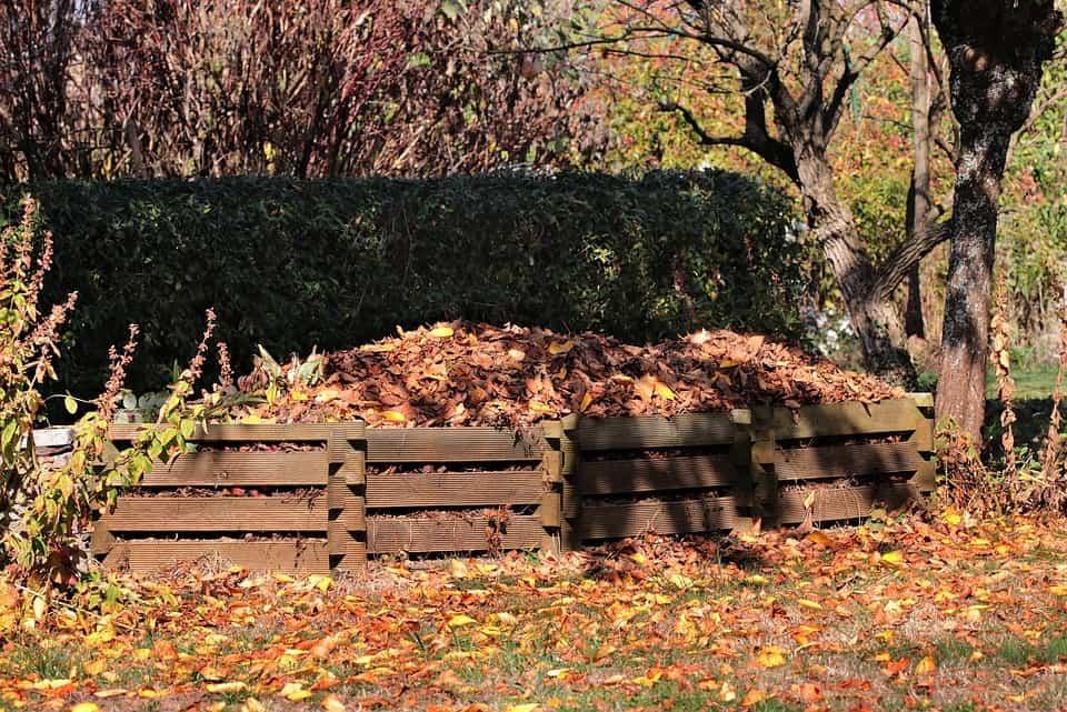 Compost Heap Leaves Fall