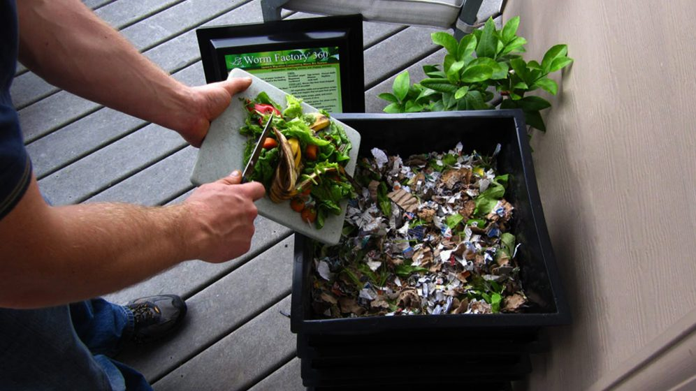 Best Worm Composting Bin Vermicomposting 2019