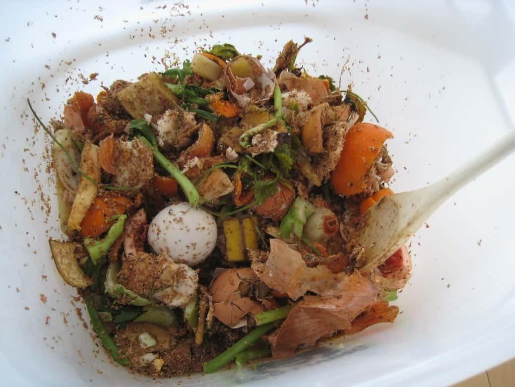 bokashi food scraps