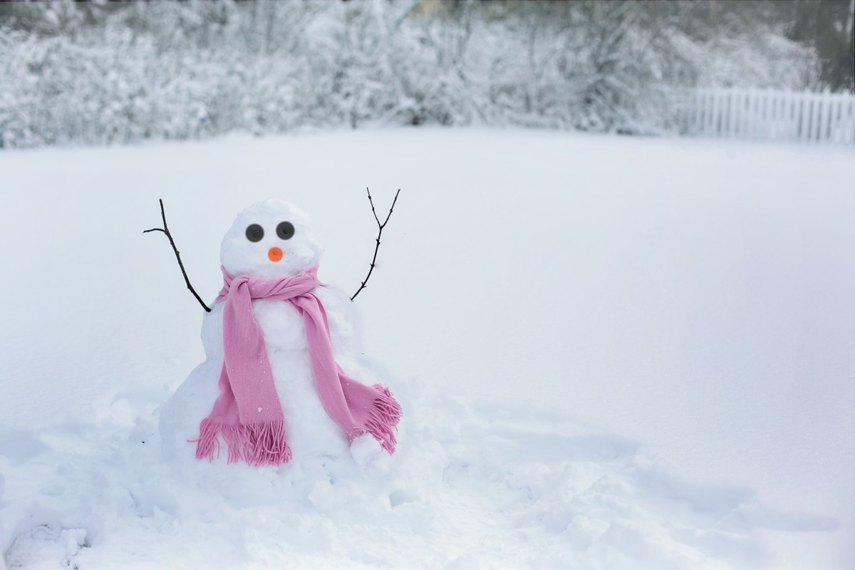 snowman in cold