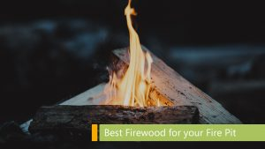 best firewood for your bonfire pit main image