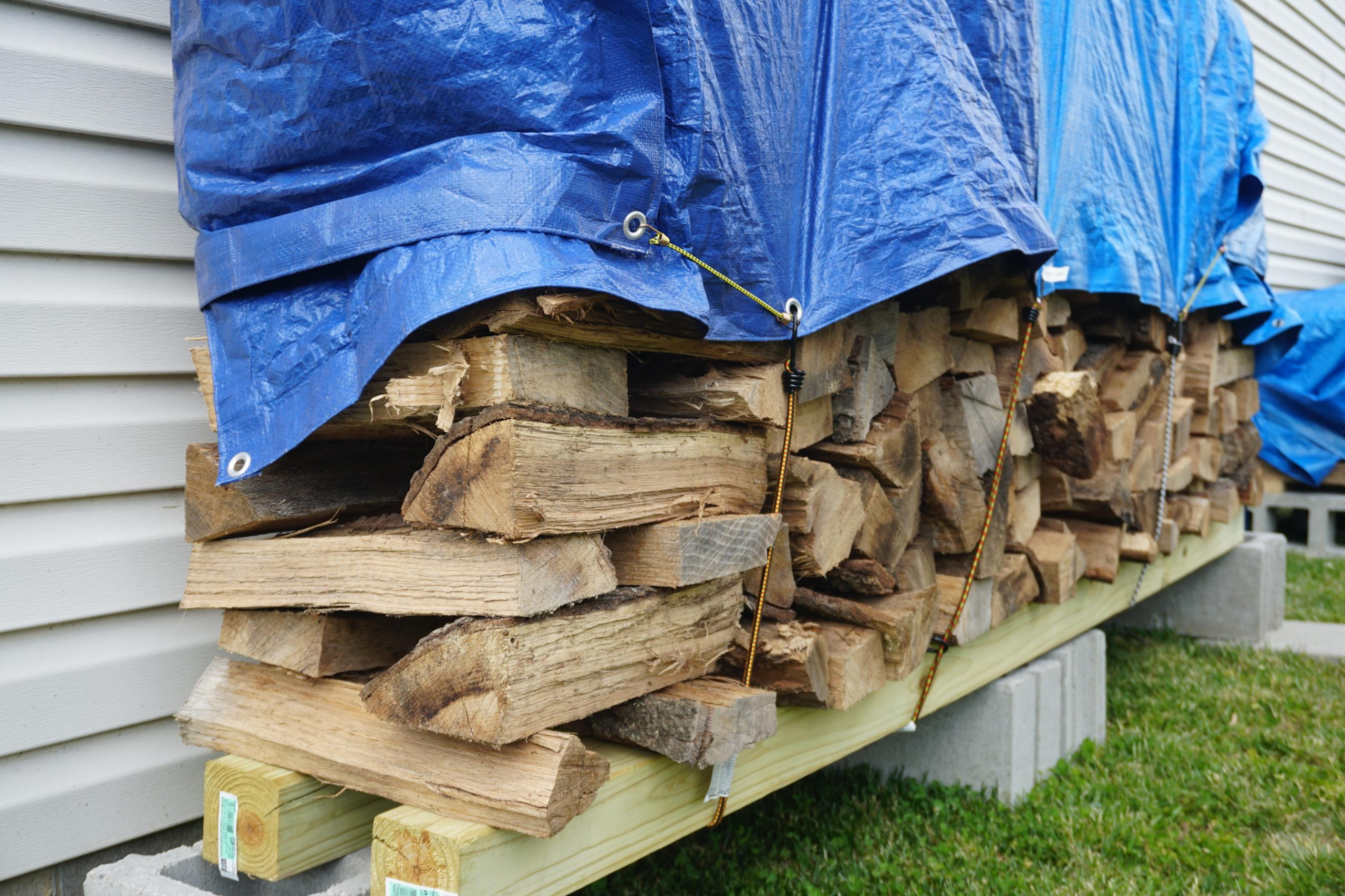 firewood stacked and covered